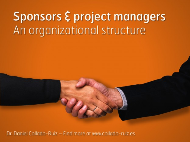 Project sponsors and project managers